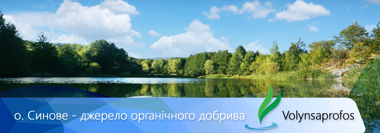 photoeditorsdk-export-1
